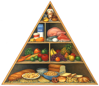 The Food Pyramid and Business | Orchard Advisors