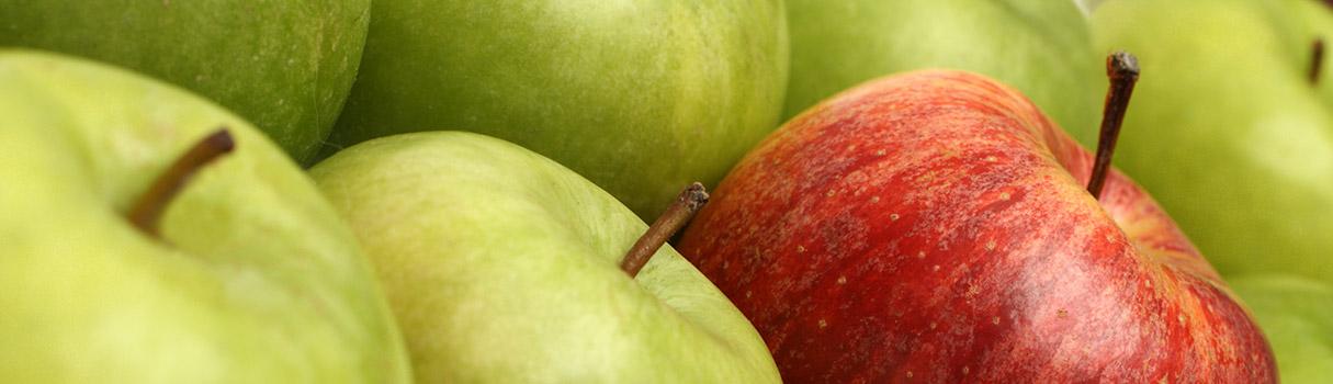 orchard_advisors_banner1-sm